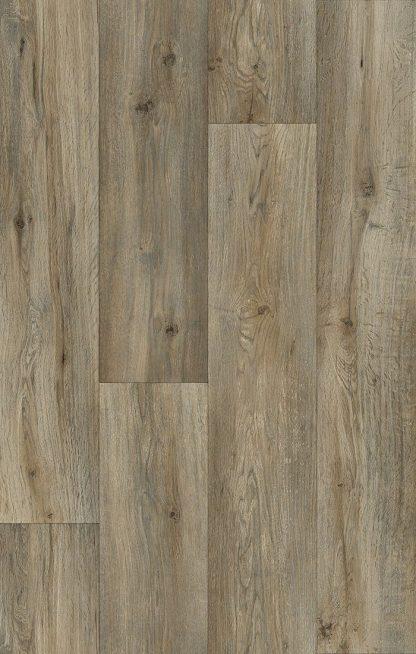 Silk Oak 973M_
